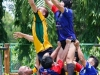 lineout-vs-japs